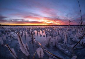 зима, лёд, река, закат, камыш, горизонт