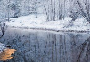 зима, лёд, снег, река, деревья