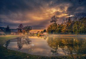 осень, лебедь, озеро, листья, деревья, вода, отражение