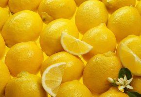 Обои фрукты, еда, цитрус, лимон