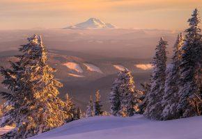 пейзаж, лес, зима, снег, ели, гора, даль