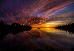 пейзаж, вечер, закат, река, деревья, даль, горизонт