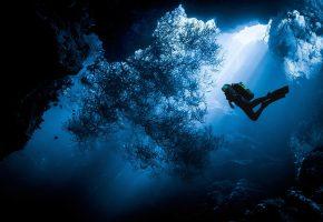 вода, человек, море, дайвинг, природа