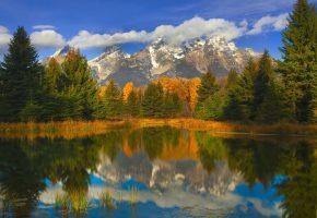 отражение, в, зеркальной, воде